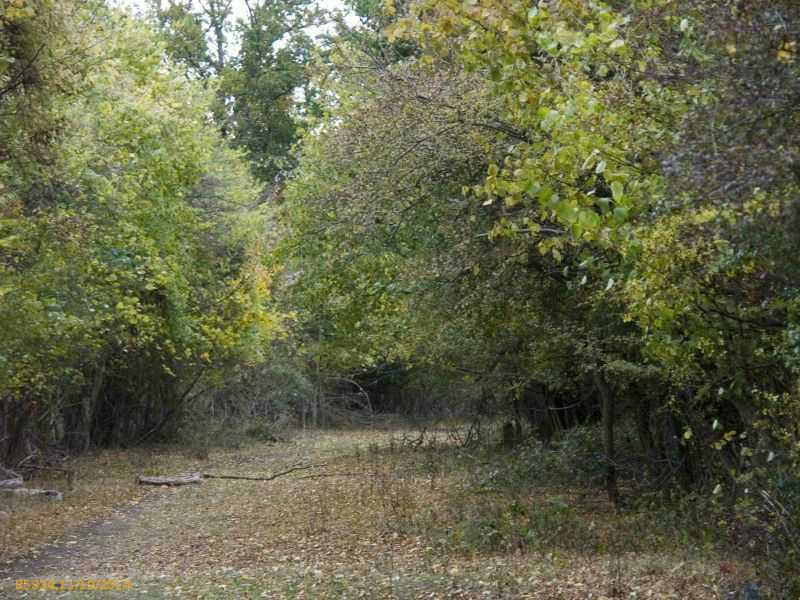Lot 8 Hickory Drive, Woodstock, Maine 04219