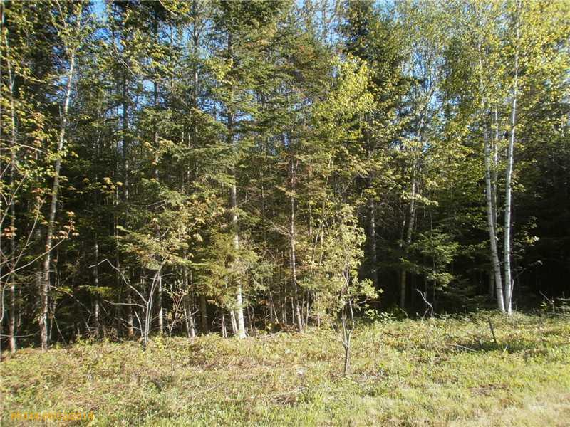 20 Bear Track Road, Tomhegan Twp, Maine 04478