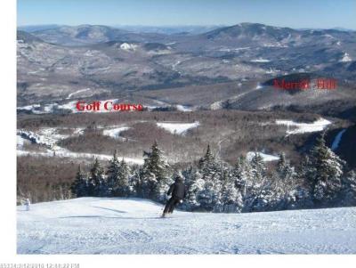 Photo of 2 Morganite, Newry, Maine 04261