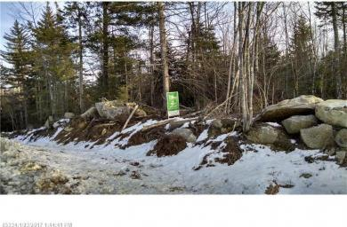 Lot 4 White Orchard Rd, Frankfort, Maine 04438