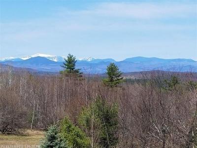 Photo of Lot 24 Pequawket Trl, Hiram, Maine 04041