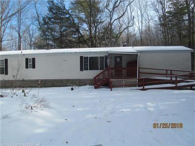 Photo of 96 Hiram Hill Rd, Hiram, Maine 04041