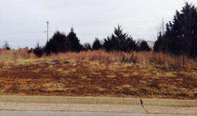 Photo of Marshall Drive, St Robert, MO 65584