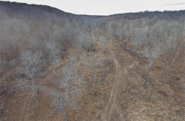 Highway Yy, Steelville, MO 65449
