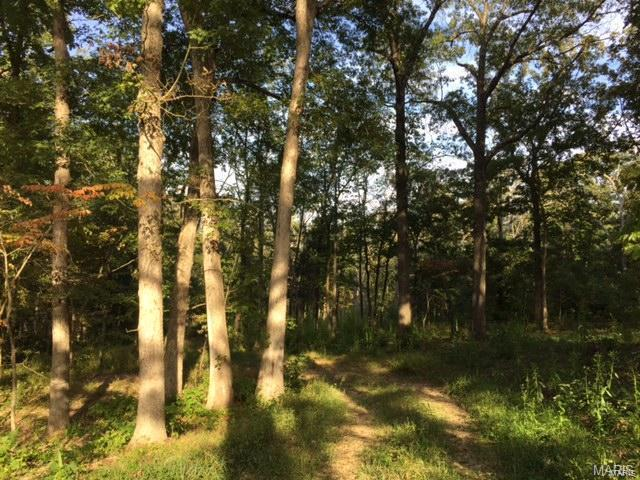 County Road 3600, St James, MO 65559