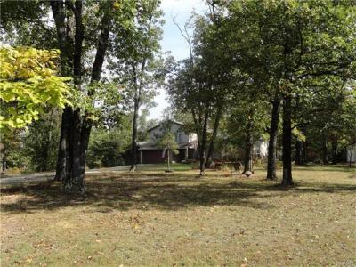 Photo of 1281 County Road 2630, Salem, MO 65560