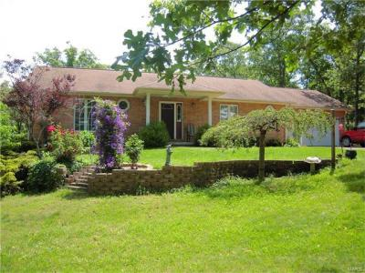 Photo of 145 Valley Lane, Steelville, MO 65565