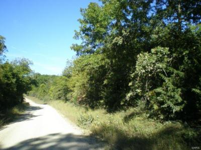 Photo of Cr 6360 & Cr 6370, Edgar Springs, MO 65462