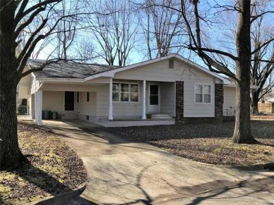 Photo of 228 East Eldon Street, St James, MO 65559