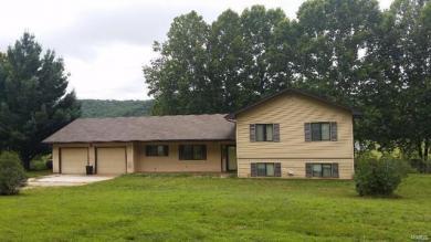 18500 Cliff Road, Dixon, MO 65459