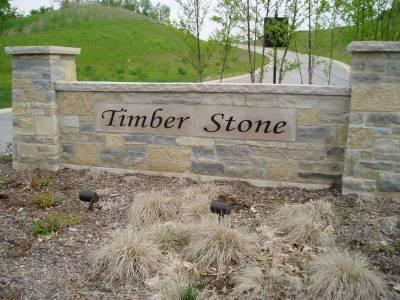 LT92 Timber Stone Subdivision, Richfield, WI 53033