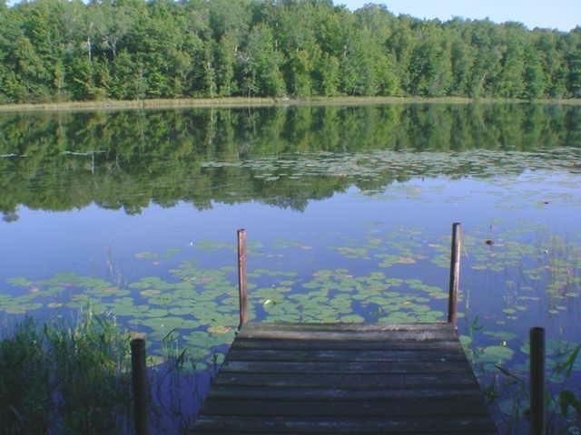 Lt11 N Kelly Lake Rd, Brazeau, WI 54174