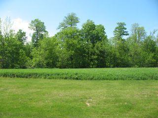 Lt9 Danmar Acres, Manitowoc Rapids, WI 54247