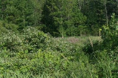Photo of 1882 County Road I, Cedarburg, WI 53024