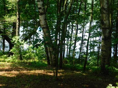 Photo of N8867 County Road G Rd, Red Springs, WI 54128