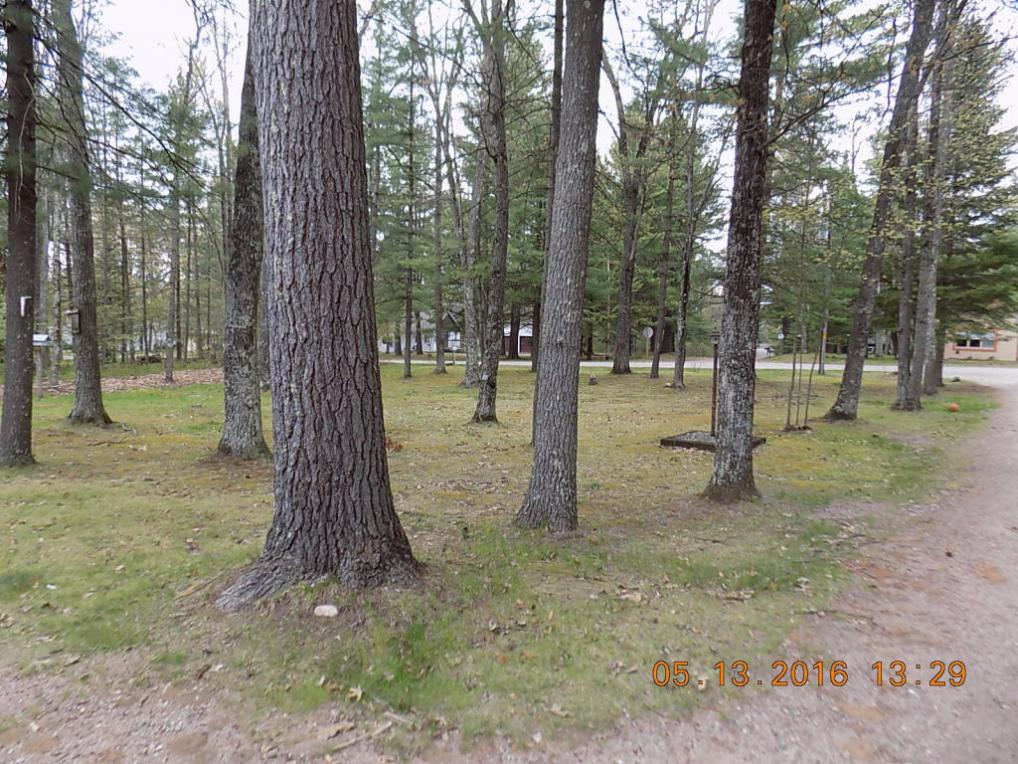 11729 Tracey Rd, Riverview, WI 54114