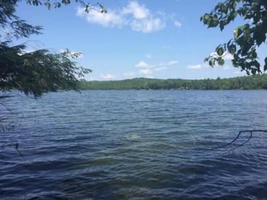 18180 Lake John Rd, Lakewood, WI 54138