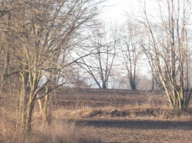 W4601 Cth Ff, Rhine, WI 53020