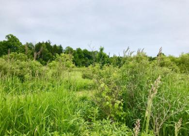 7.638 Acre State Road 32, Herman, WI 53020