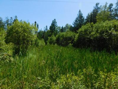 Photo of Lt0 Park Ave, Hutchins, WI 54450