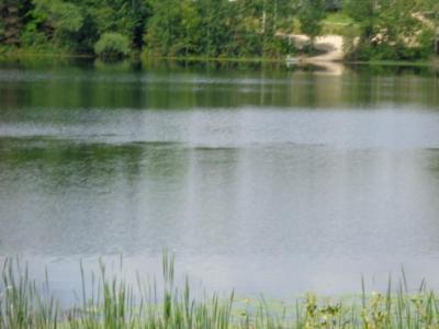 Photo of N9599 Lake Dr, Almon, WI 54416
