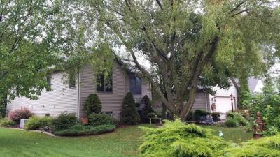 Photo of 2806 Lisa Ave, Sheboygan, WI 53083