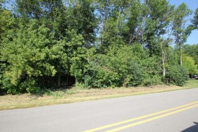 Lot 8 Driftwood Beach Rd, Brothertown, WI 53014