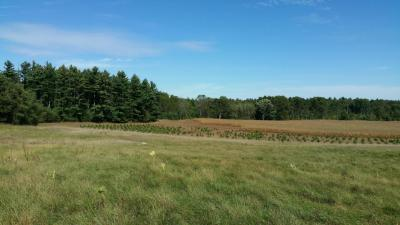 Photo of State Road 82, Jackson, WI 53952