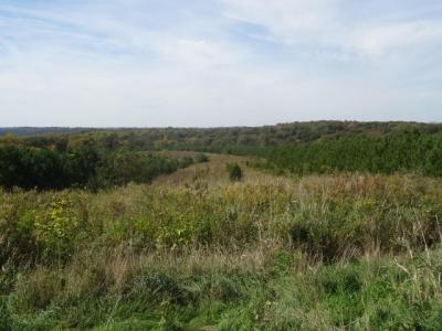 Photo of Halverson Ridge Rd, Clayton, WI 54655