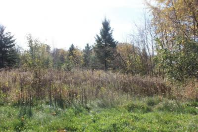 Photo of W5945 County Road Z, Plymouth, WI 53073