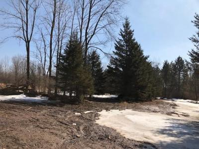 Photo of 119.5acres Huntington Rd, Red Springs, WI 54128