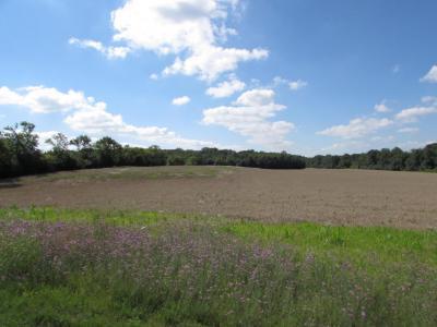 Photo of Lt0 Spring Prairie Rd, Burlington, WI 53105