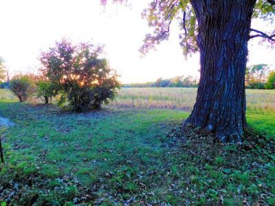Photo of W148N12301 Pleasant View, Germantown, WI 53022