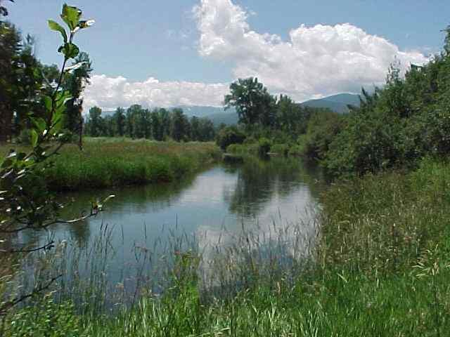 Lot 1d Riverwalk Estates, Missoula, MT 59808