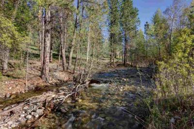 Photo of 770 Gold Creek Loop, Hamilton, MT 59840