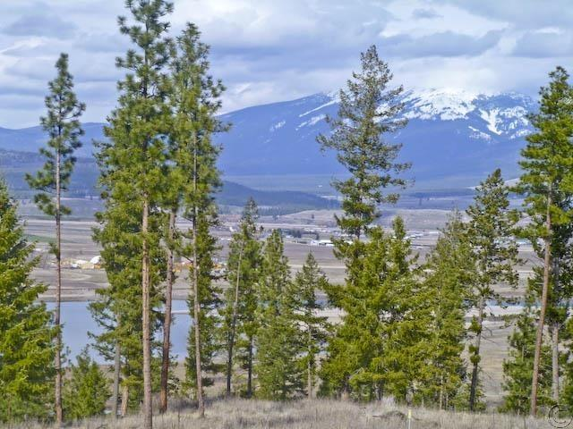 Lot 12 River, Plains, MT 59859