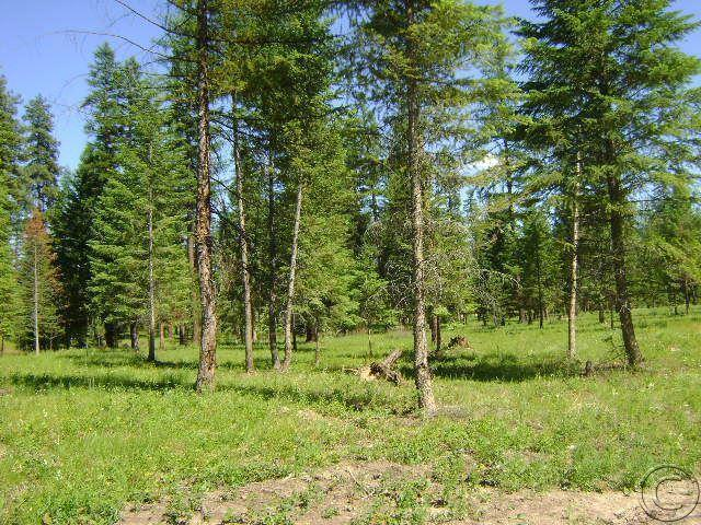 Lot 17 Quarter Circle Cross, Saint Regis, MT 59866
