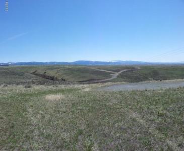 Nhn Bitterroot View Ranch Lot 1a, Florence, MT 59833