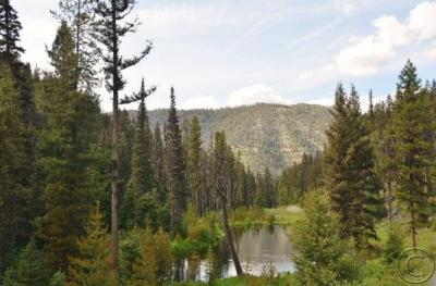 Photo of 4 Mile Hughes Creek Road, Darby, MT 59829