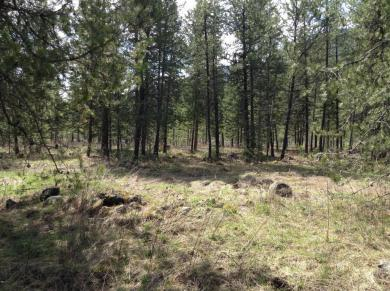 Lot 5 Trestle Creek Iii, Saint Regis, MT 59866