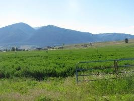 Nhn Eight Mile Creek Road, Florence, MT 59833