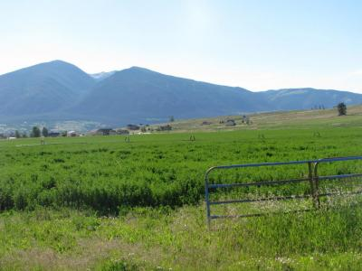 Photo of Nhn Eight Mile Creek Road, Florence, MT 59833