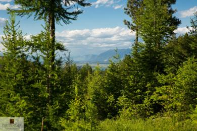 410 Blacktail Heights Road, Lakeside, MT 59922