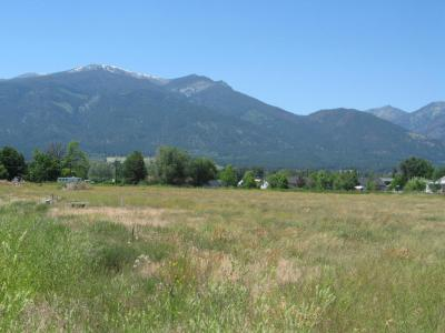 Photo of Red Willow Drive, Stevensville, MT 59870
