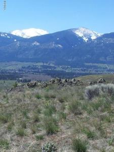 Lot 1 White Cloud Ranch, Florence, MT 59833