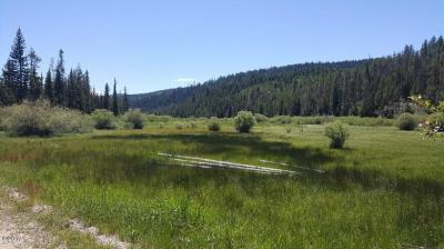 Photo of Mill Creek Road, Frenchtown, MT 59834