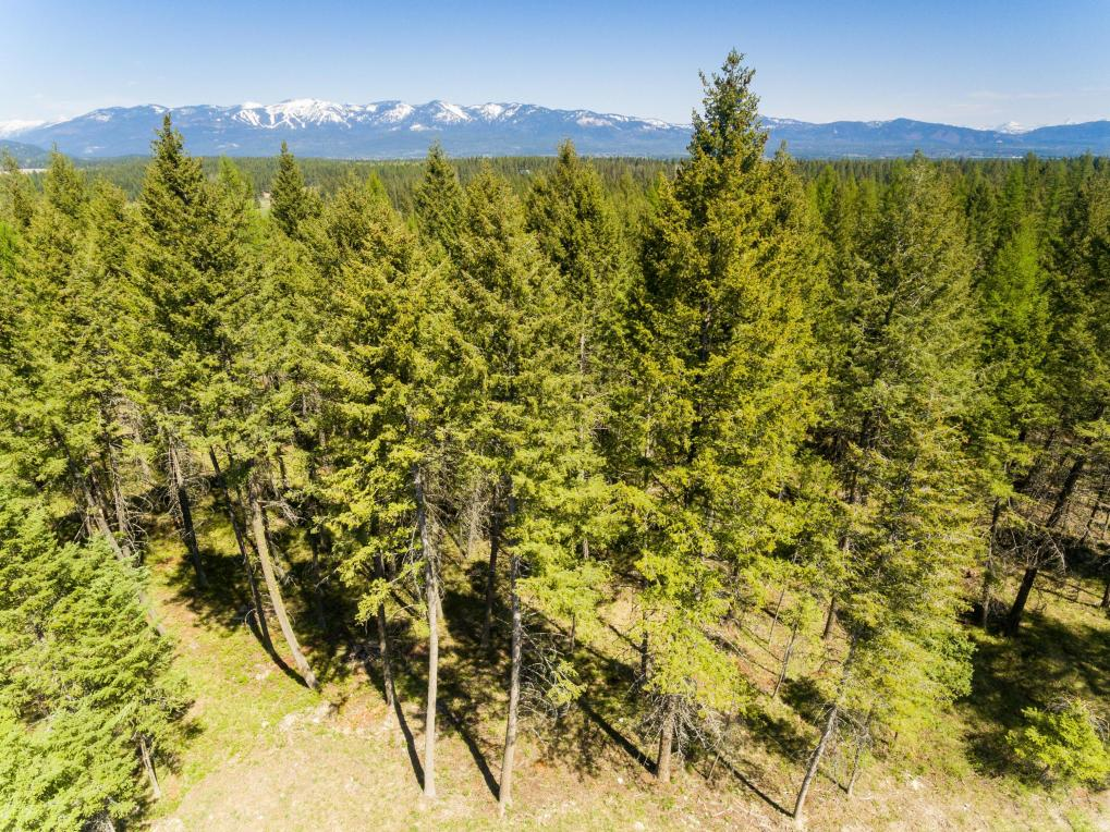 143 Hills Lookout Court, Whitefish, MT 59937