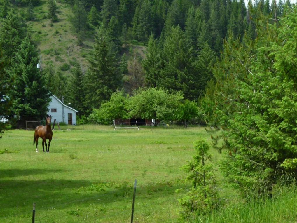 193 Notta Road, Libby, MT 59923