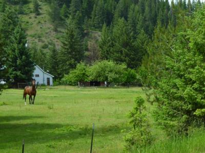 Photo of 193 Notta Road, Libby, MT 59923