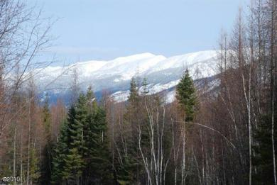 Lot 11 Wapiti Pines, Bigfork, MT 59911